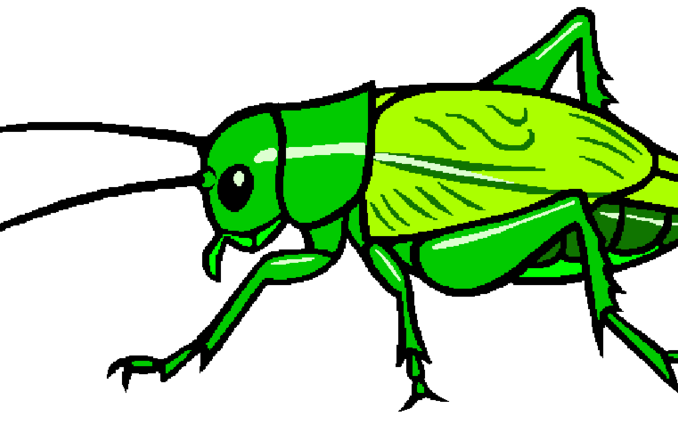 Angry clipart bug. Cricket stylized misterbug on