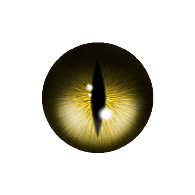 animal eye png