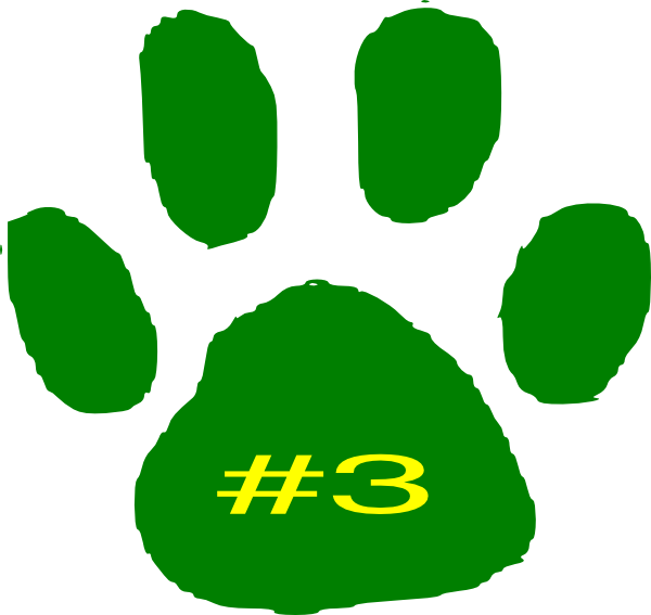 Transparent paw jaguar. Animal footprints x png