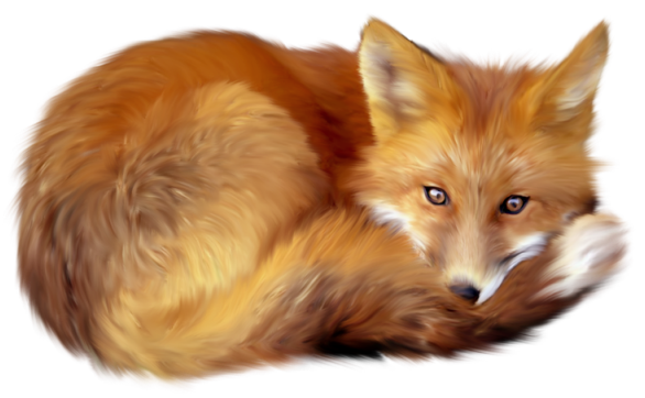 Fox clipart png. Gallery yopriceville high quality