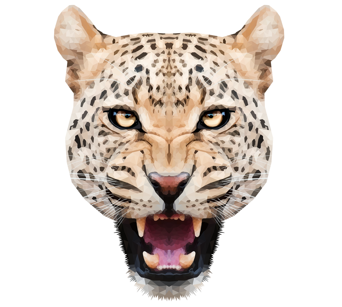 Animal head png. Images of spacehero leopard