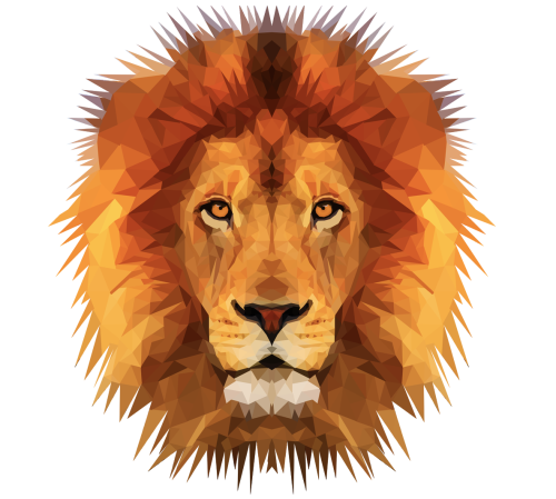 Animal head png. Image lion abstract jam