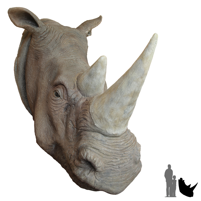 Animal head png. Rhinoceros deer african rhino