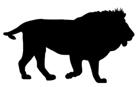 Animal silhouette png. Black and white pictures