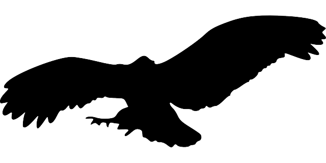 Animal silhouette png. Silhouettes transparent pictures free