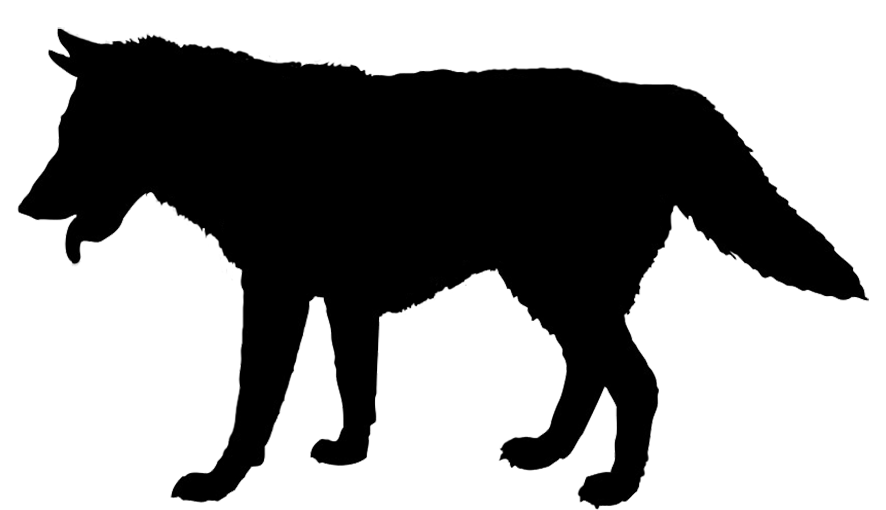 Panther walking png. Animal silhouette clip art