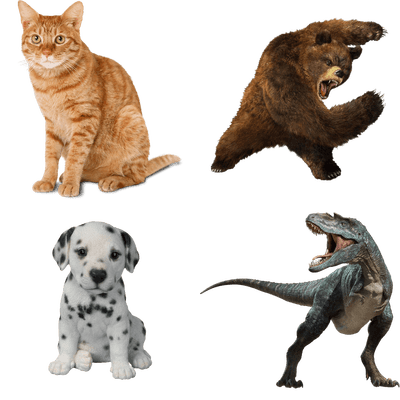 Animal transparent png. Animals images stickpng