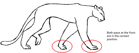 animate drawing four legged