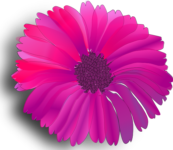 Animated flower png. Pink clipart