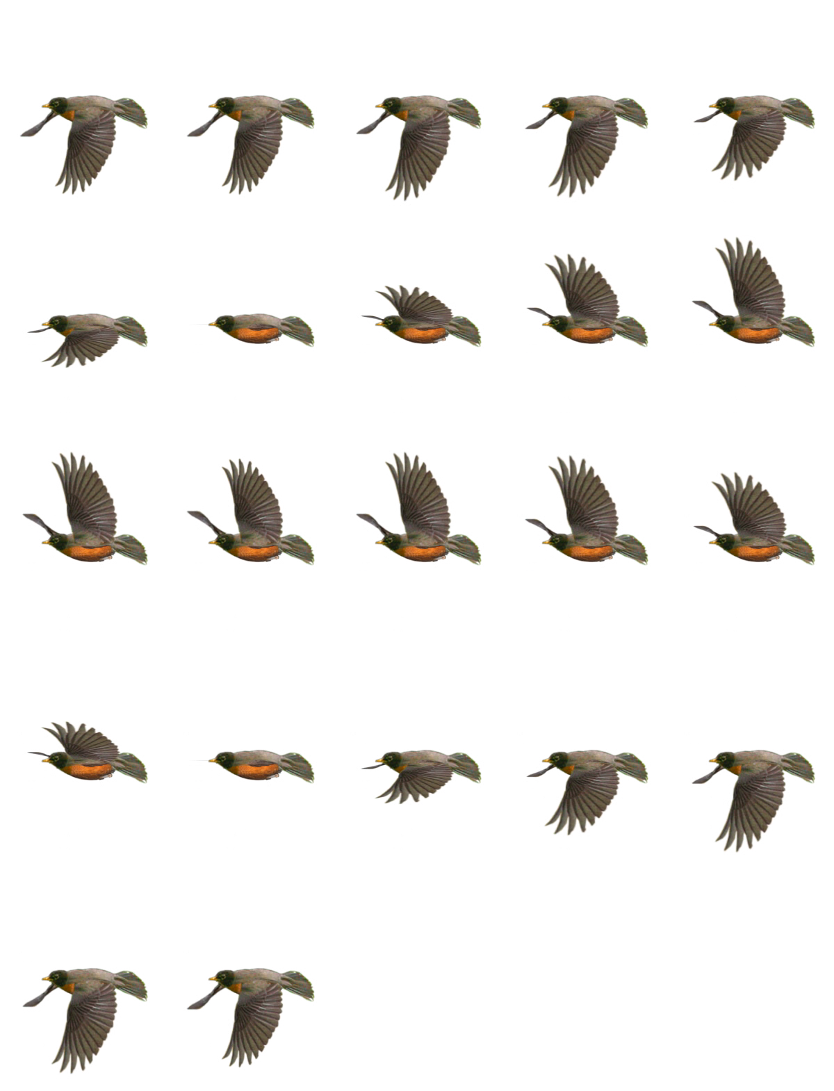 Bird sprite png. Sheets return of the