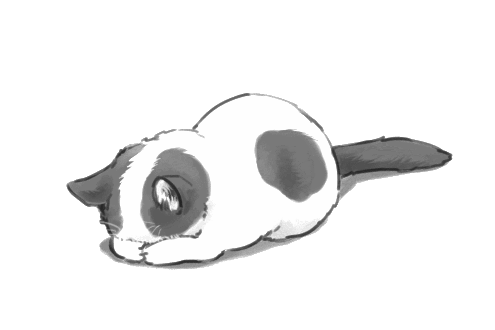 Anime cat png. Image cute transparent animal