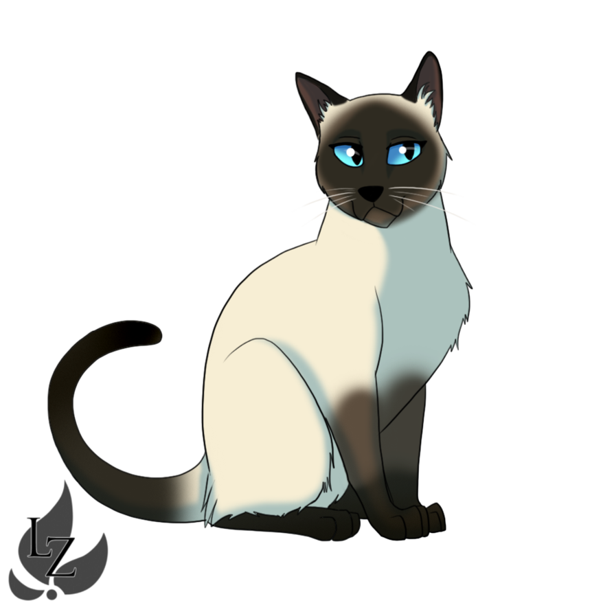 Anime cats png. Image siamese cat by