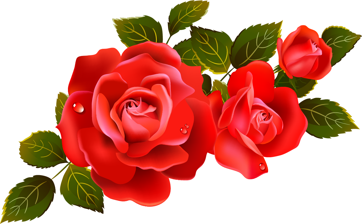 Anime roses png. Large red clipart element