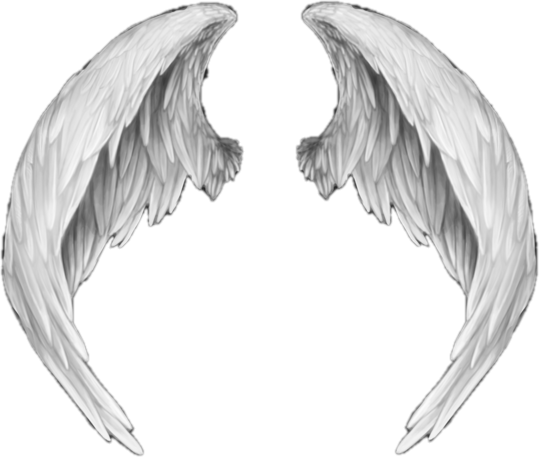 Anime wing png. Wings angel white freetoedit