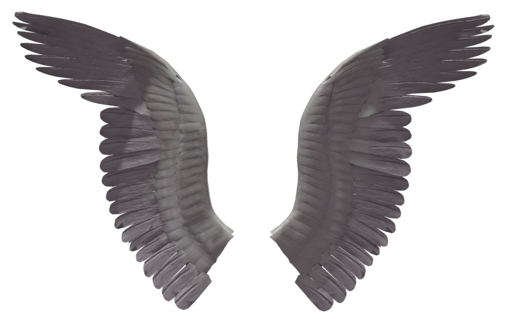Eagle wing png. Black wings image purepng