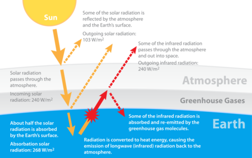 Annotated drawing carbon cycle. The and nitrogen earth