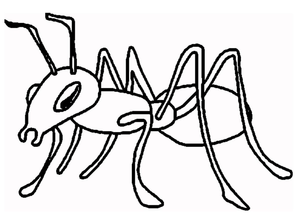 Ant clipart mask. The faceshape on this