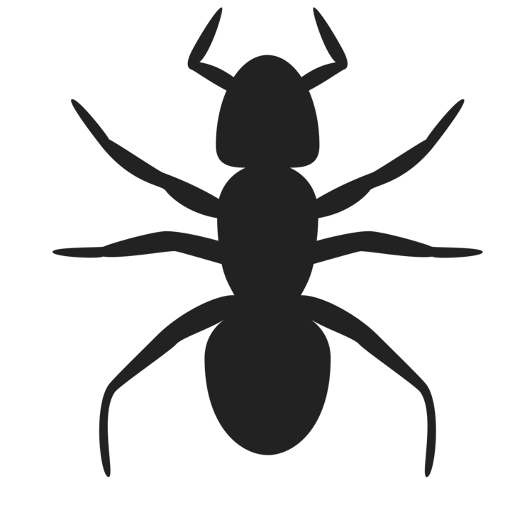 Ant drawing png. Insect silhouette art free
