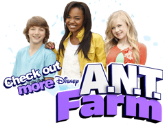 Ant farm png. A n t wiki