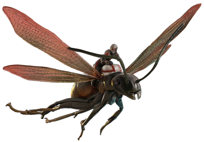 Ant man and the wasp png. Transparent images all antman