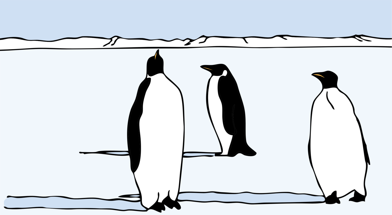Drawing penguins african penguin. Graphic arts silhouette free