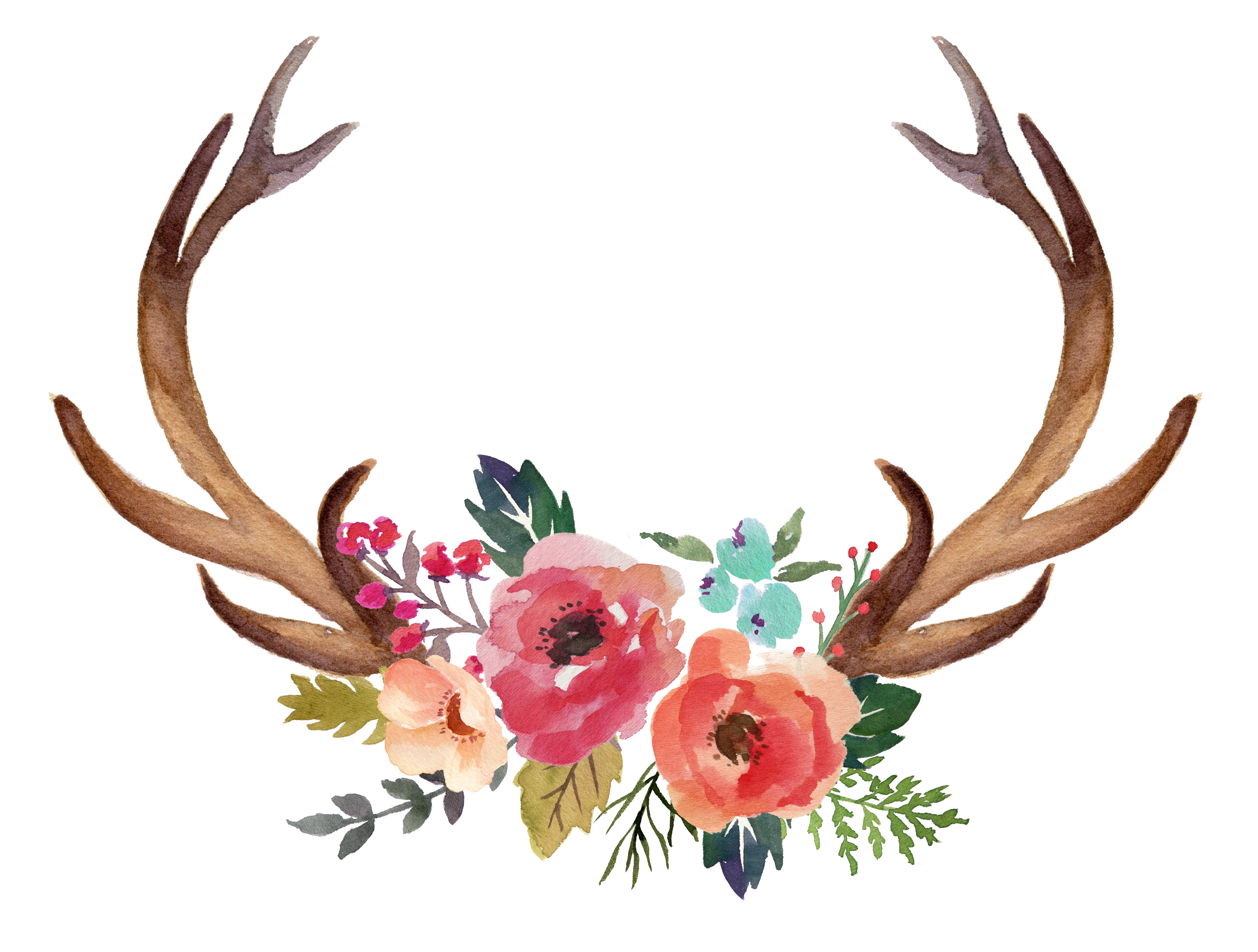 Antlers and flowers png. Deer antler clipart at