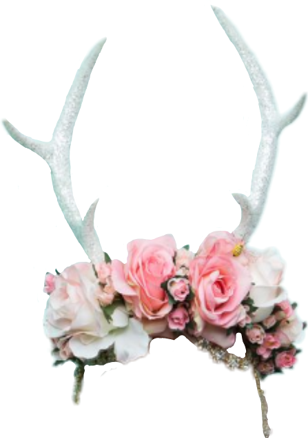 Antlers and flowers png. Crown flowercrown report abuse