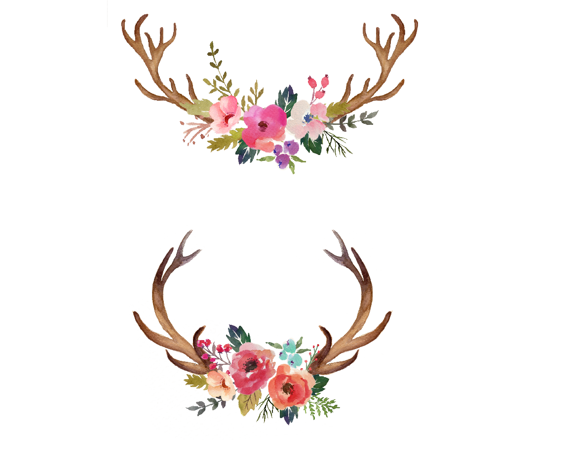 Antlers and flowers png free. Watercolour watercolor painting hand