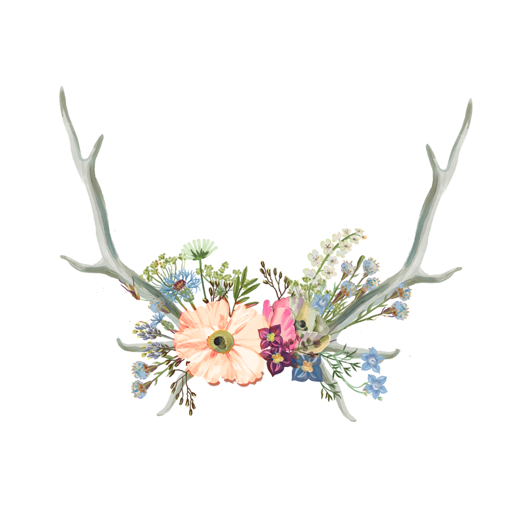 antlers and flowers png