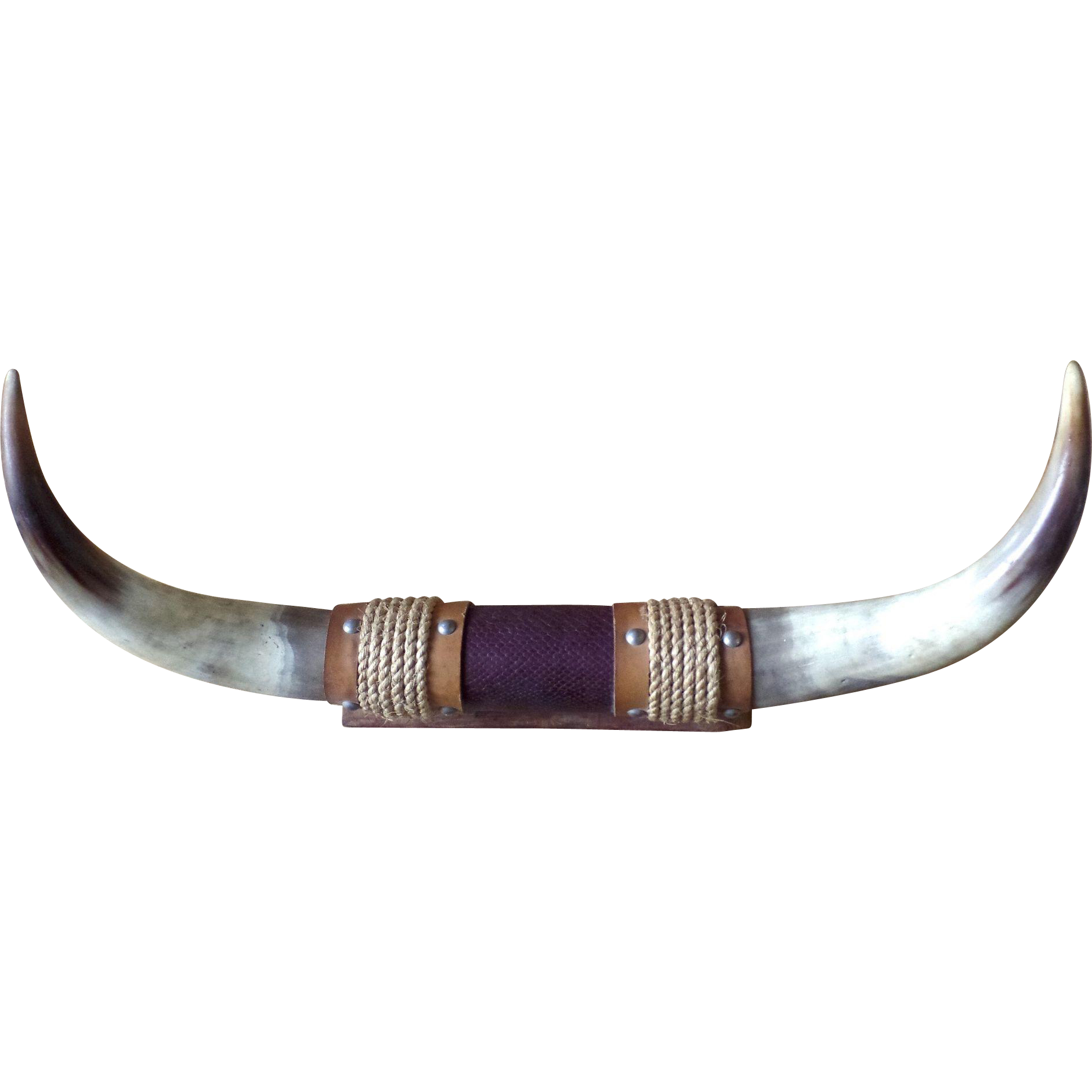 Bull by the transparent. Horns png image transparent stock