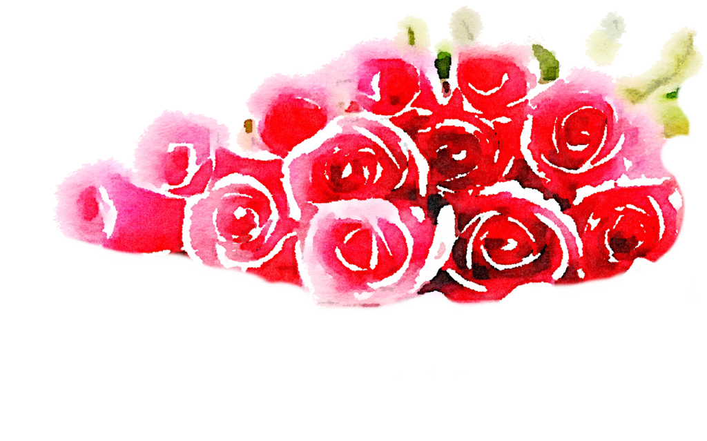 Watercolor roses png. Free pile freetouse usefreely
