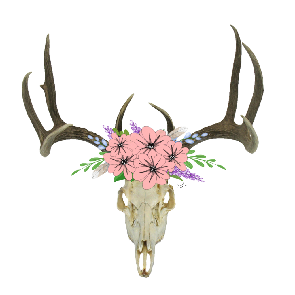 Antlers with flowers png. Skull freetoedit