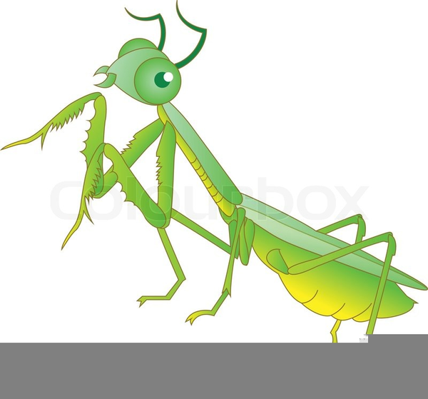 Ants clipart cartoon grasshopper. Cute ant free images