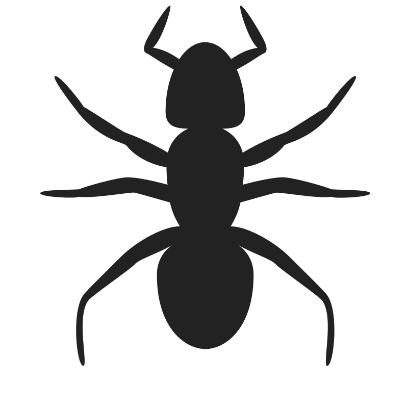 Vector ant transparent background. Ants clipart many cute