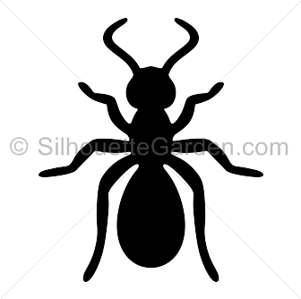 Ants vector silhouette. Ant