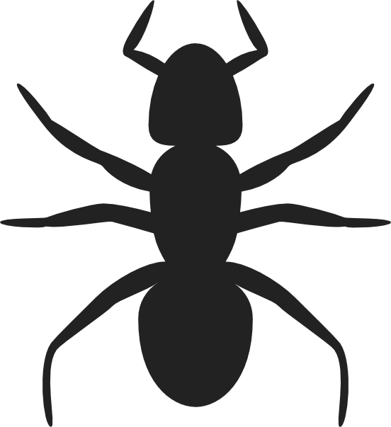 Ants vector standing. Clipart svg cute borders