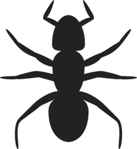 Vector ant face. Ants clipart silhouette cute