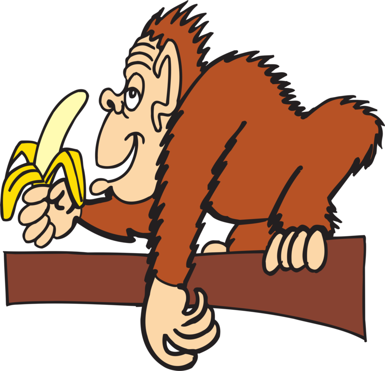 Monkeys eating bananas clipart png. Ape banana chimpanzee monkey