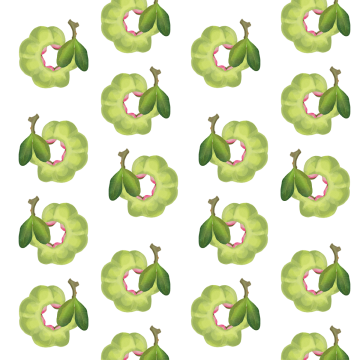 Watercolor greenery png. Green images vectors and