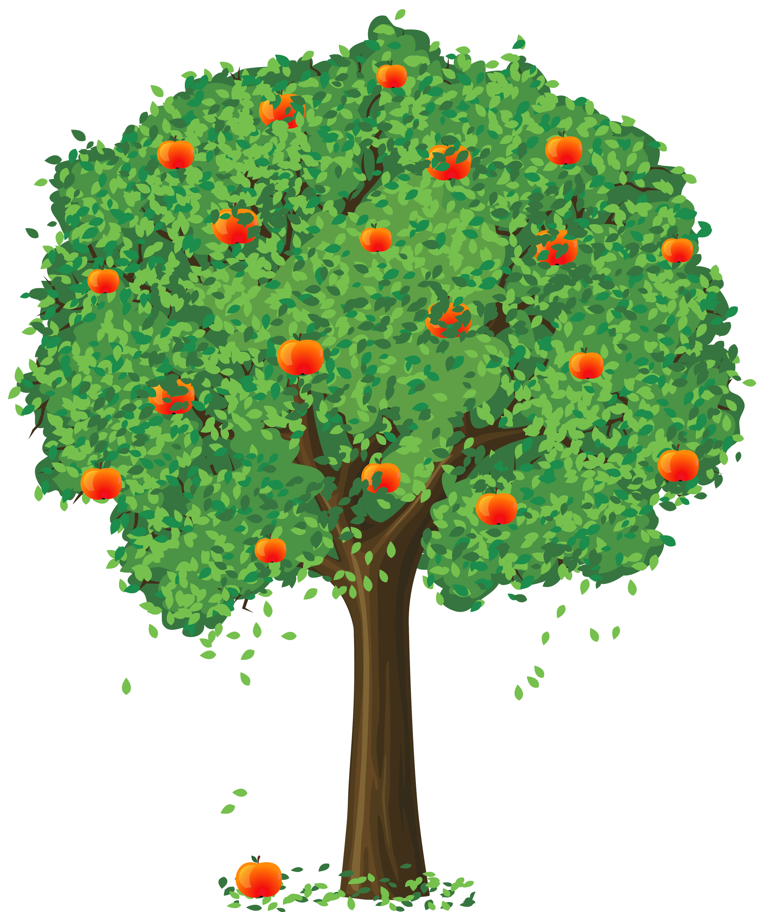 Apple tree png. Painted clipart gallery yopriceville