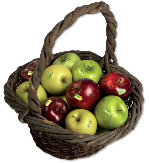 Apples in basket transparent file png. From italian alps apple