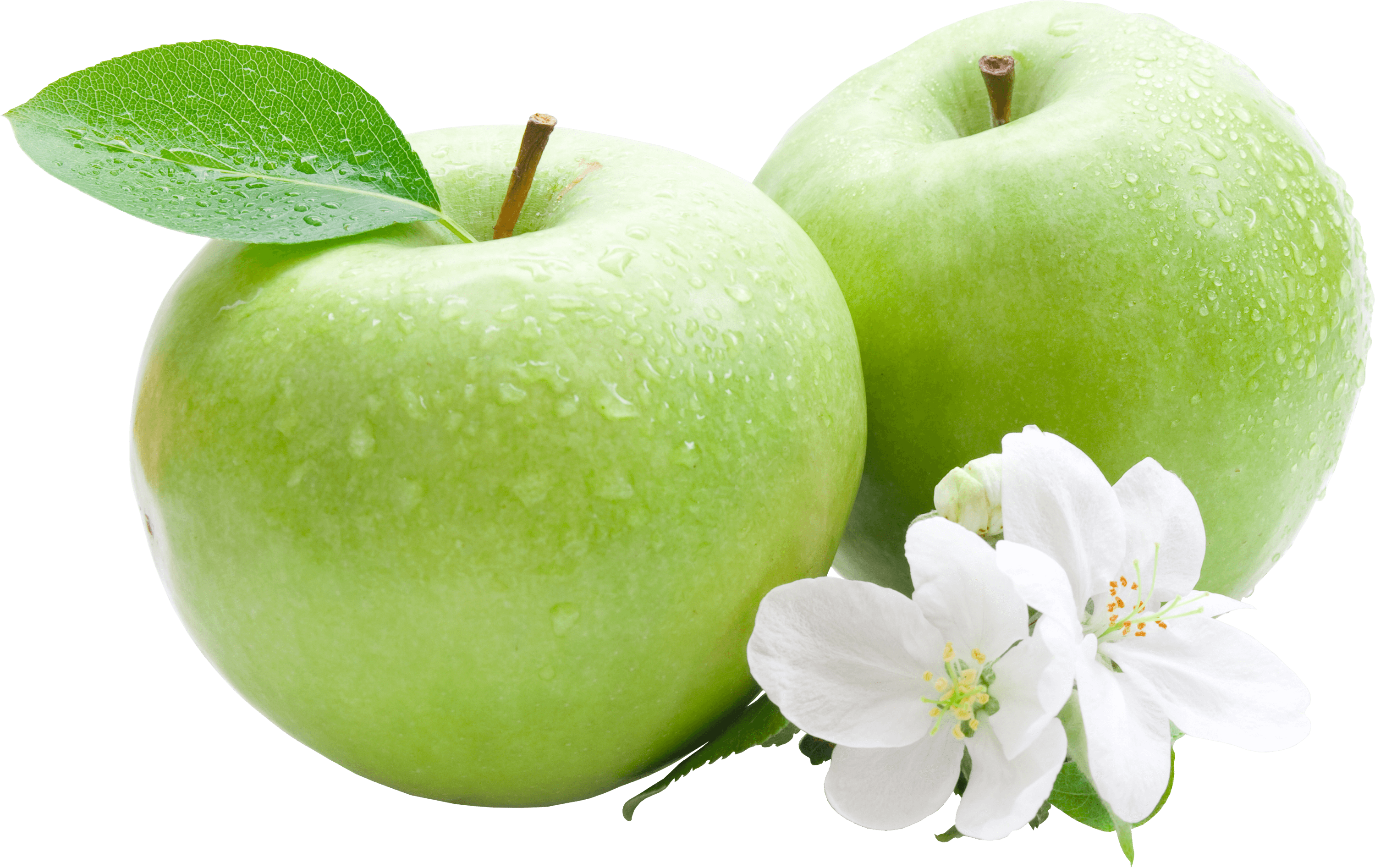 Apple slice png. Green duo flowers transparent