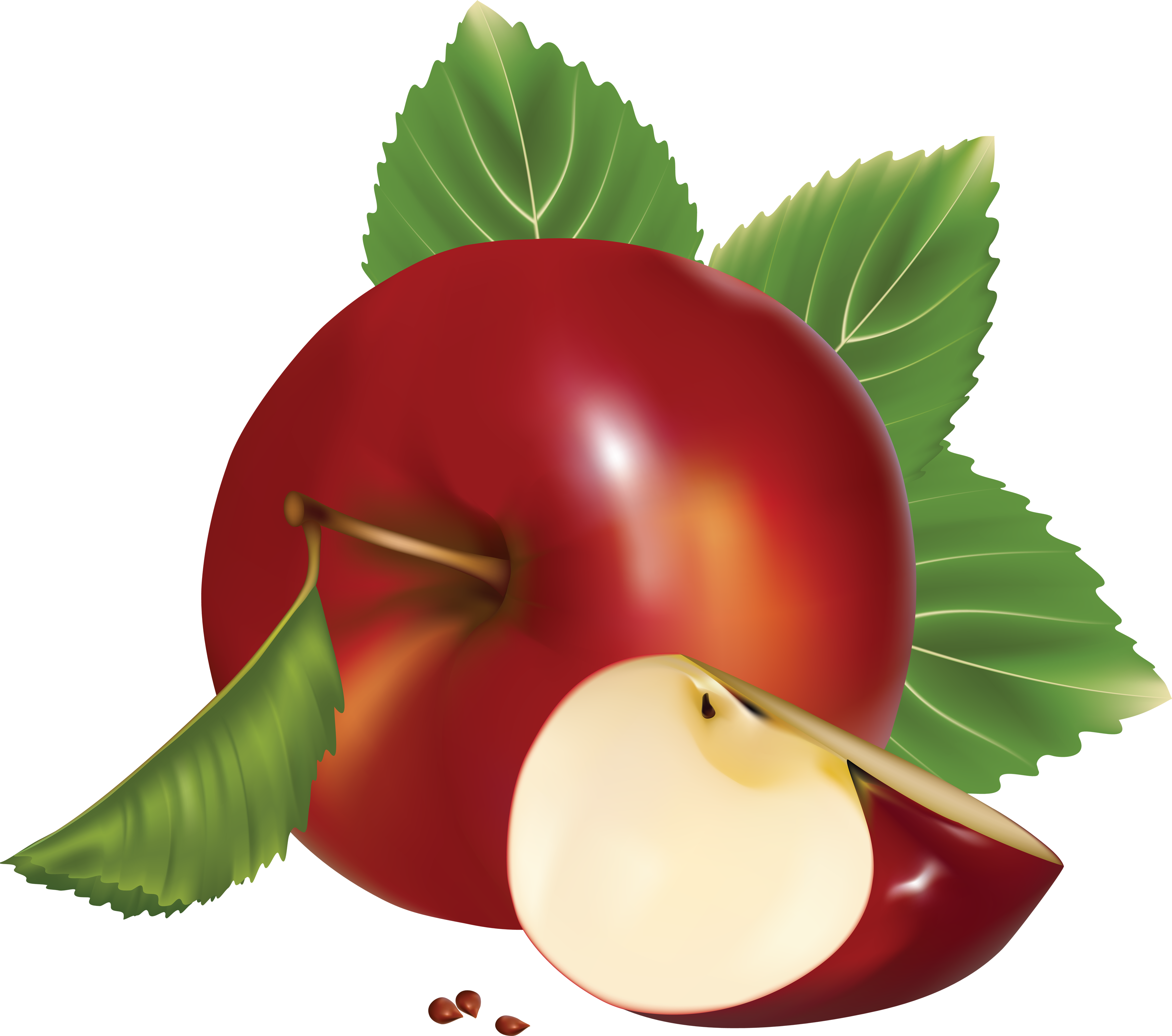 apples vector red