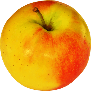 Apples photography png. Free stock photo of