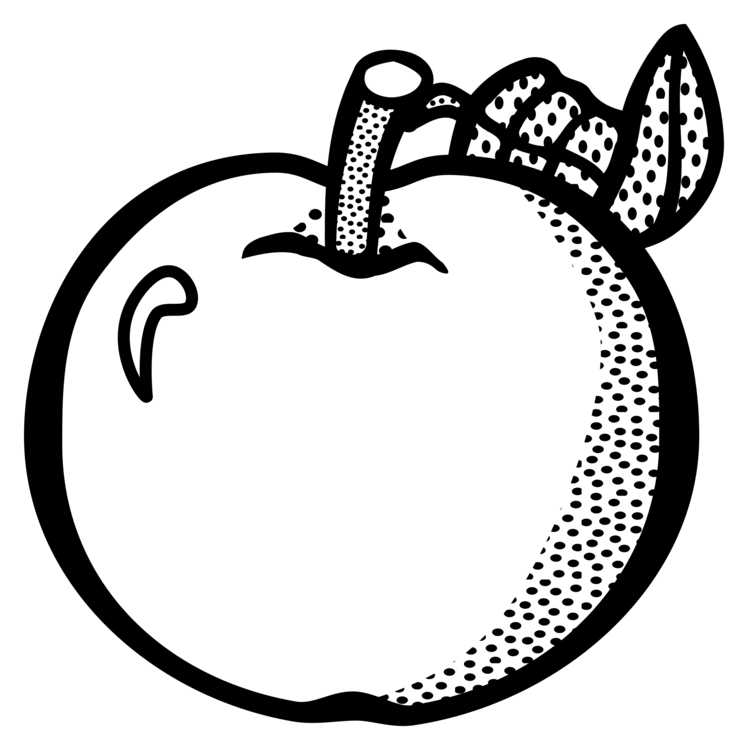 Apples vector lineart. Fruit apple food drawing