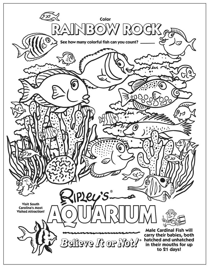Aquarium Coloring Page Transparent & PNG Clipart Free Download - YA ...