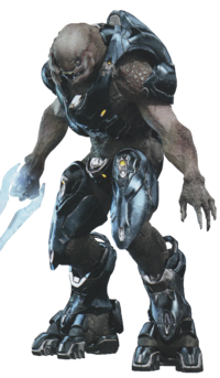 Arbiter halo 5 png. The in poll discussions