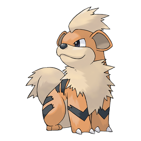Arcanine transparent cute. Growlithe pok mon wiki