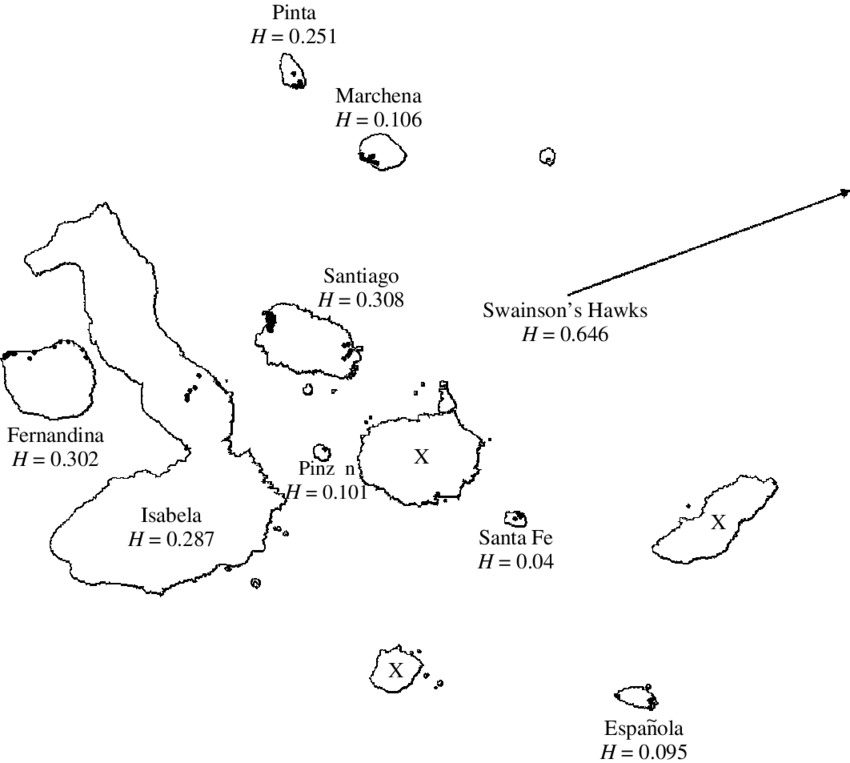 Archipelago drawing. Map of the gal