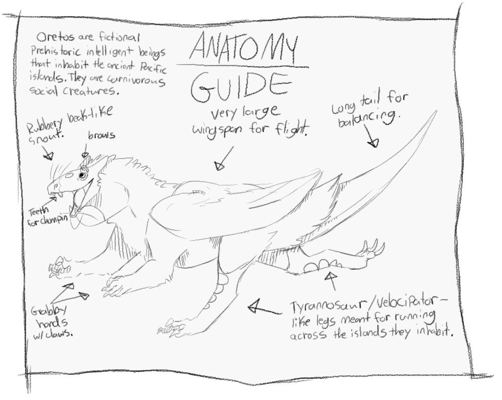Archipelago drawing. Province anatomy guide by